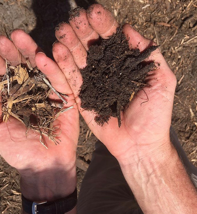 Organic Soil From Decaying Mulch