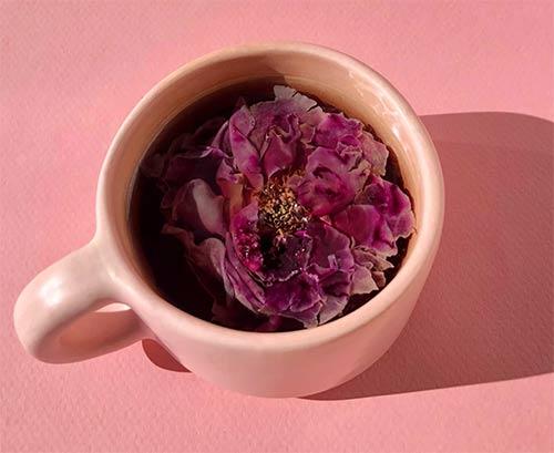 Whole Flower Rose Tea in Pink Mug