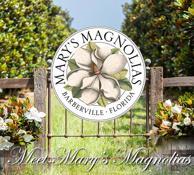 Meet Mary's Magnolias