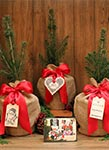 Seeds of Life Holiday Blue Spruce Gift Trees