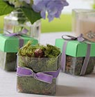 Wedding Seeds Favors
